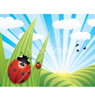 Free ladybirds on the leaves vector - бесплатный vector #242669