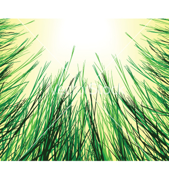 Free sungrass vector - бесплатный vector #270199