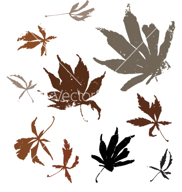 Free autumn leaves vector - Free vector #270469