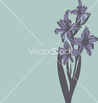 Free daylillie vector - Kostenloses vector #271439