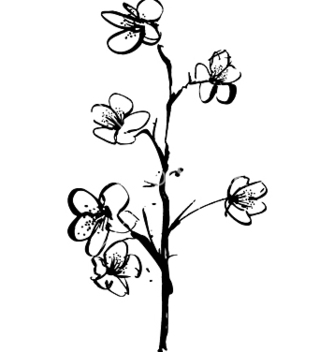 Free cherry blossom ink vector - бесплатный vector #271489
