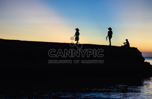 Silhouettes at sunset - Free image #271869