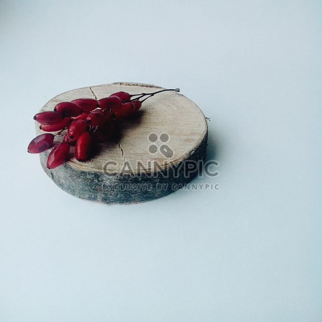 Barberry, berries, piece of wood, bark. - Free image #272179