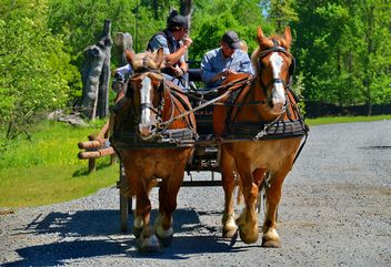carriage drawn by two horses - image #274919 gratis