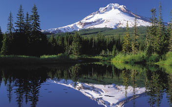 Nature - Mt Hood, Oregon - Free image #279979