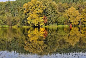 Autumn lake - image #280929 gratis