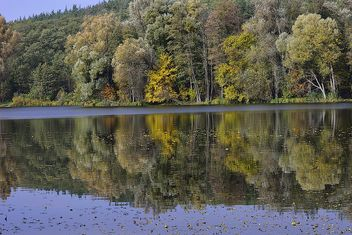 Autumn lake - image #280939 gratis