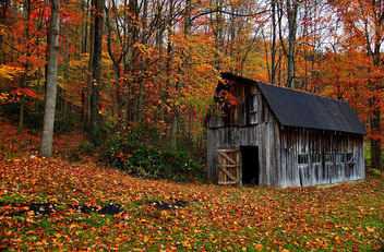 Autumn Country Barn - image #285569 gratis