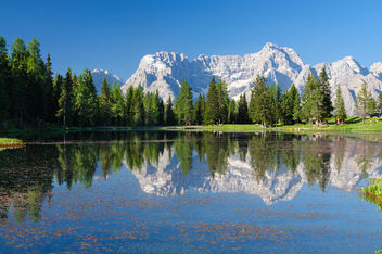 Summer in the Alps - image #286489 gratis
