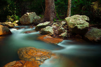 Stream Dreams | Talakona - Free image #287159
