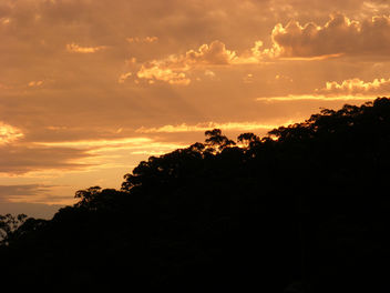 Darks Common Sunset - Free image #287279