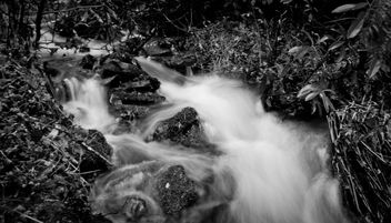 Water water everywhere - image gratuit #287419