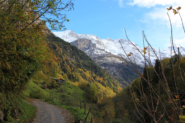 Mountains of the Lauterbrunnen valley - бесплатный image #287479