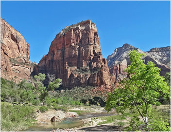Just One More Look! Zion NP, Angel's Landing 5-1-14zzca - image gratuit #292359