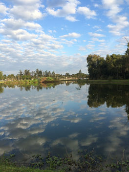Mirror Pond - Free image #293139