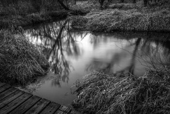 Dusk at the Creek - image gratuit #295539