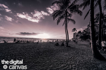 hawaii beach sunset - image gratuit #296369