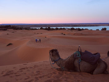 Morocco-Sunset at desert3 - Free image #296749
