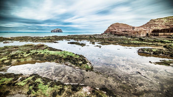 Bass rock, North Berwick, Scotland, United Kingdom - Landscape photography - бесплатный image #297289