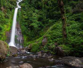 the waterfall (Bali) - Free image #299299