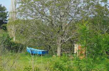 Greece (Lesvos Island)-Blue boat at rest in woods!! - Kostenloses image #299449