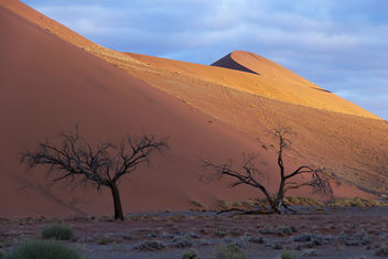 Sunset on the Dunes, Namibia - бесплатный image #301119