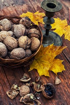 Walnuts, yellow leaves and candlestick - image #301989 gratis