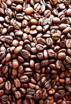 Coffee beans - Kostenloses image #302299