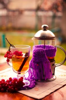warm tea outdoor with vibrunum - image gratuit #302919