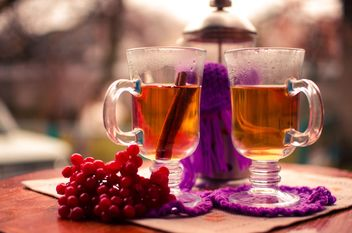 warm tea with cinnamon - image gratuit #302929