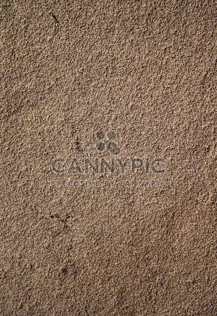 Sandy wall texure - Free image #303759