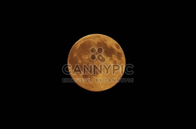 Full moon - Free image #304009