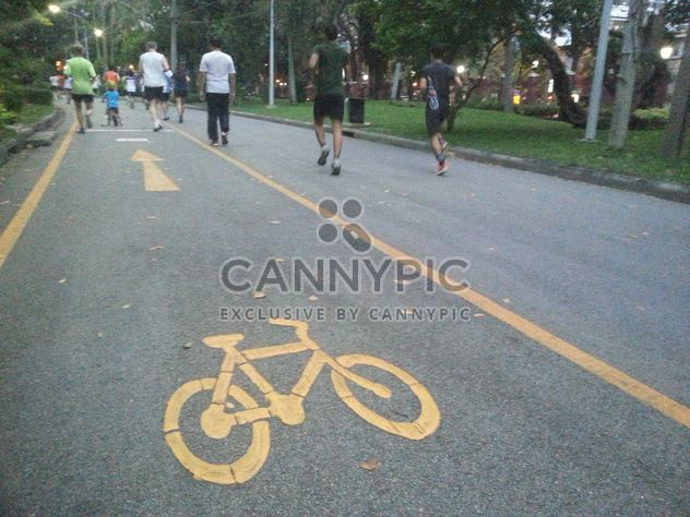 Bicycle track - Free image #304499