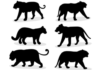 Tiger animal vector - Free vector #305599