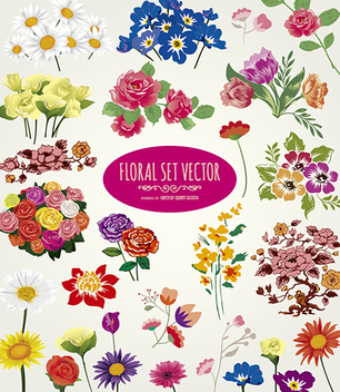 Flower vector collection - vector gratuit #305909