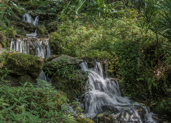 Waterfall in Rainbow Springs State Park in Dunnellon, Florida - бесплатный image #307009