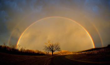 Almost Over The Rainbow - Free image #307719