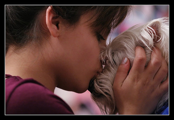 Puppy Love - Free image #308069