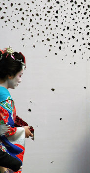 Henshin maiko (tourist dressed up), Gion - image #309649 gratis