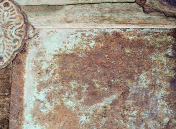 Trunk Texture - Free image #311409
