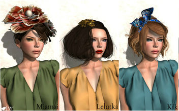 [Hair Fair] BLOGGED - image gratuit #315619