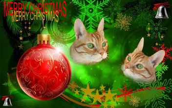 Merry Christmas to All My Friends - Kostenloses image #317879