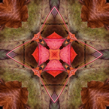 Fall Kaleidoscope II - бесплатный image #321349