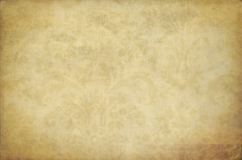 Wall flower #3 - (b)old beige - image gratuit #322129