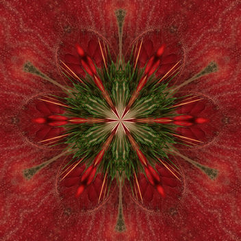 Holiday Season Kaleidoscope 2 - image gratuit #324479