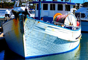 Colours in Robe Marina South Australia # dailyshoot - бесплатный image #324599