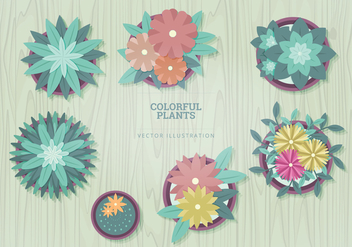 Plants Vector Illustrations - бесплатный vector #327029