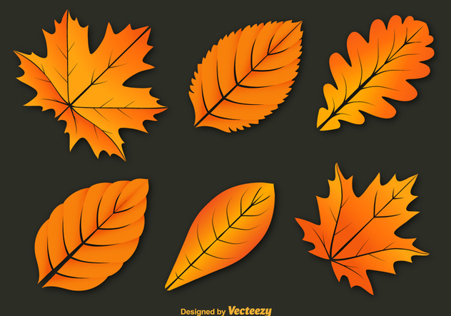 Colorful autumn leaves vectors - Free vector #328799