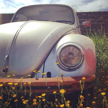 Old car on grass - image #331359 gratis