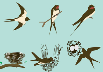 Swallows and the nests - Free vector #333839